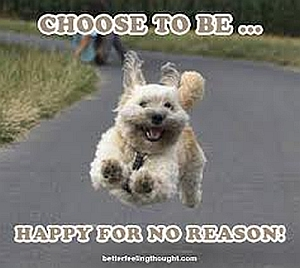 Choose to Be Happy for No Reason FB